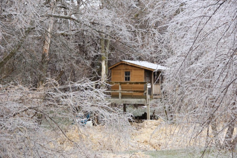 Little+cabin+surrounded+by+frosted+trees+in+the+outskirts+of+the+woods.1%2F11%2F20