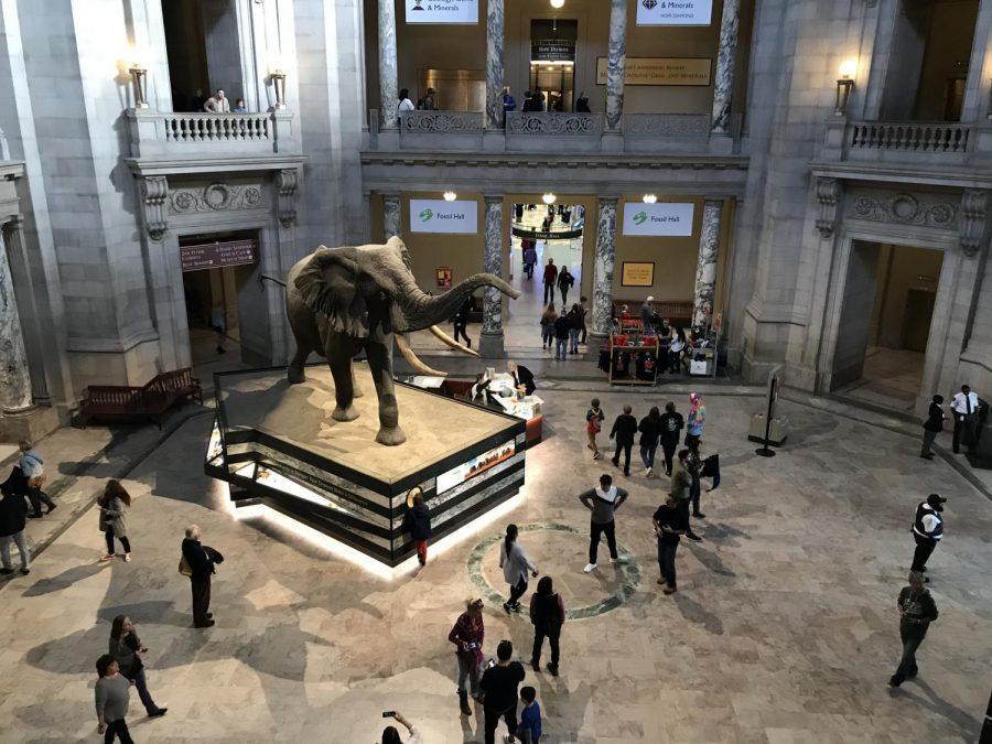 Mammoth+Statue