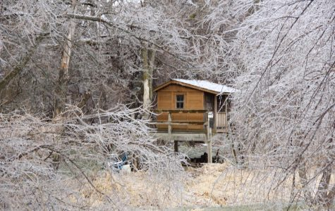 Little cabin surrounded by frosted trees in the outskirts of the woods.1/11/20